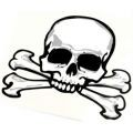 Skull and crossbones Temporary Tattoo